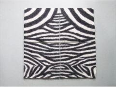 zebrakissen